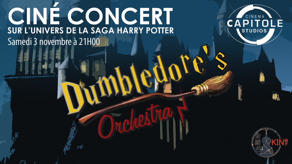 Photo du film cine concert harry potter